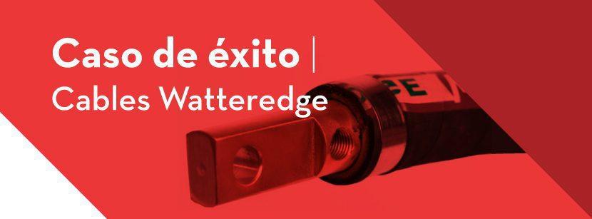Caso de éxito BFMéxico con cables Watteredge